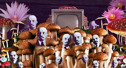 Leninas buvo grybas