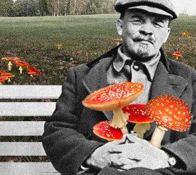 Leninas ir musmirės